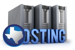 texas map icon and web site hosting servers and a caption